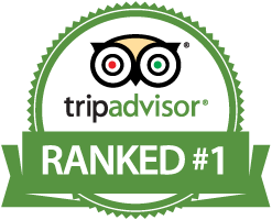Tripadvisor reviews for ticino adventures
